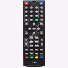 SkyVision T2202  T2603